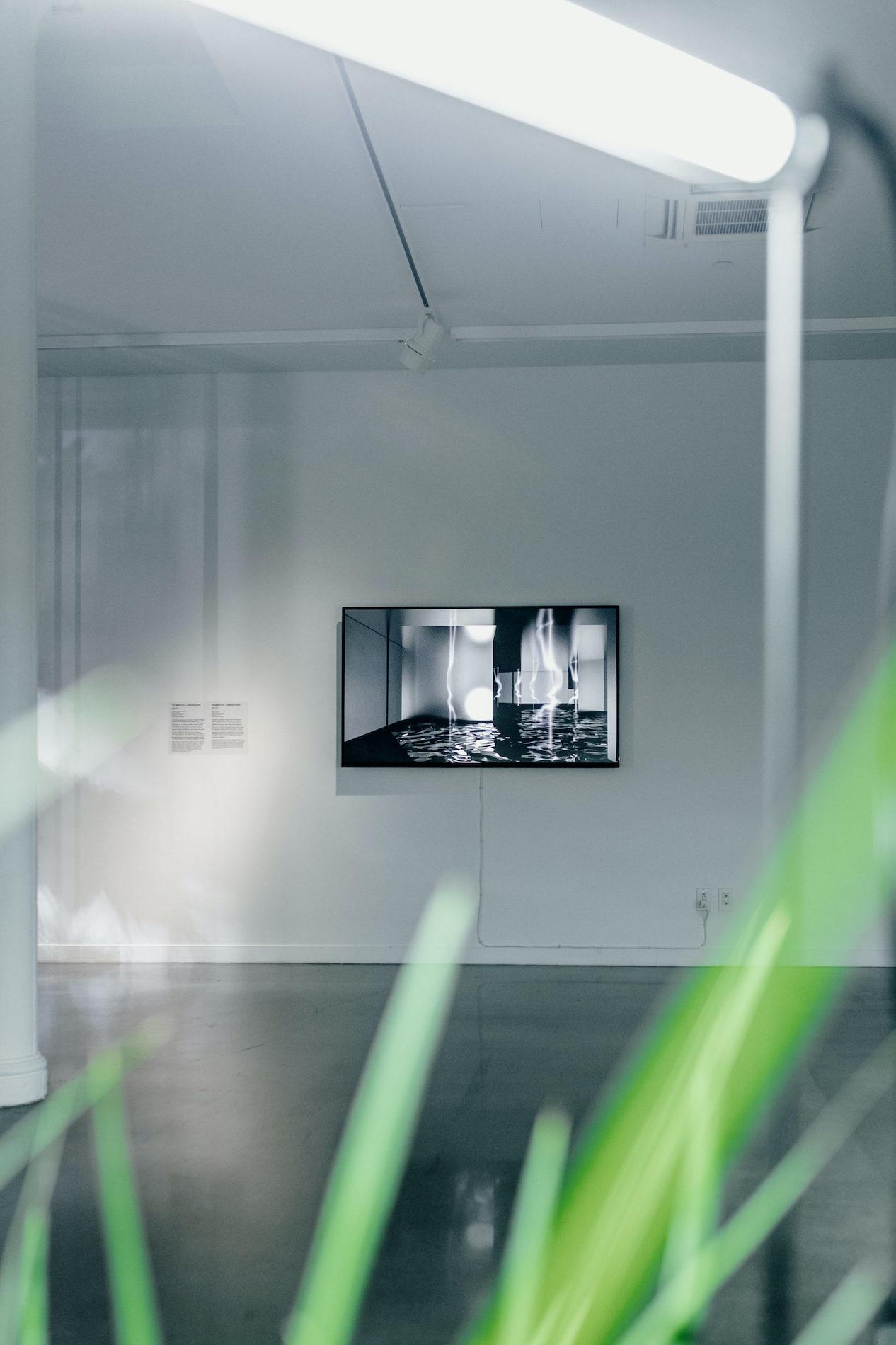 Domestic Landscape Video - Sabrina Ratté