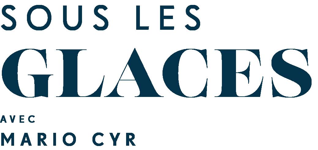 Logo SLG FR D Ark
